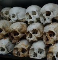 Skulls Killing Fields